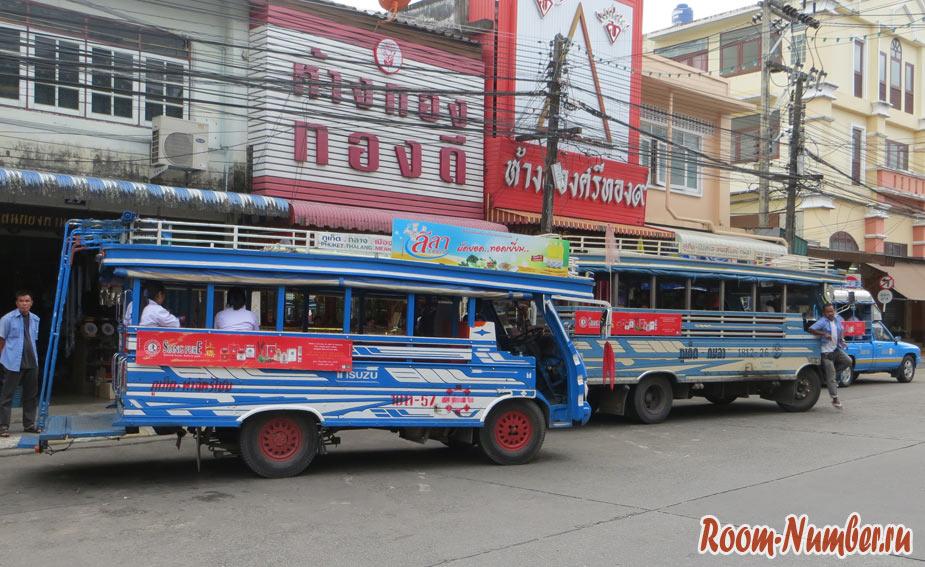 Синие автобусы